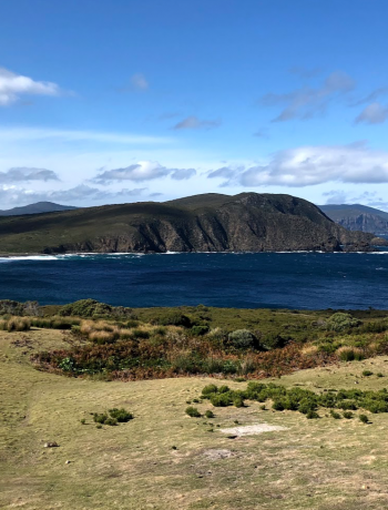 Tasmania Bruny Island Travel Tips Travelling Wanderlust